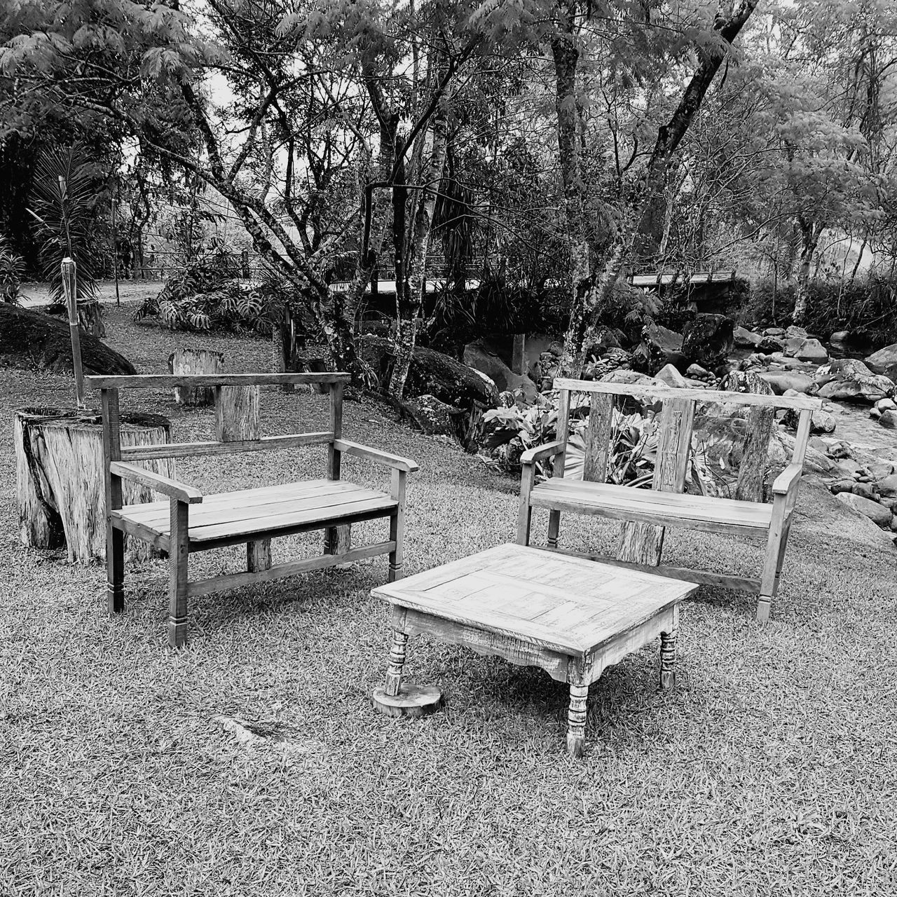 table, tree, absence, empty, chair, outdoors, tranquility, day, no people, nature, park - man made space, seat, beauty in nature