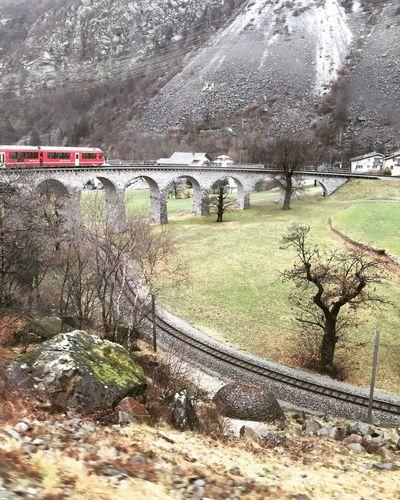 Rhätische Bahn Train