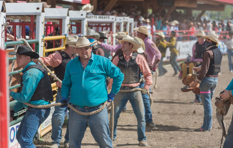 Williams Lake, British Columbia/Canada - July 2, 2016: teams of cowboys prepare to let the the wild horses into the arena for the Wild Horse Race at the 90th Williams Lake Stampede 90th Williams Lake Stampede Afternoon Arena Cowboys July Rodeo Rugged Wild Horse Race Annual Event Candid Chutes Competition Country Western Dangerous Documentary Dust Editorial  Extreme Sports Men Outdoors People Professional Rodeo Stampede Summer TEAMS