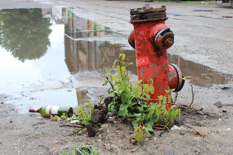 Close-up of old fire hydrant by wet street