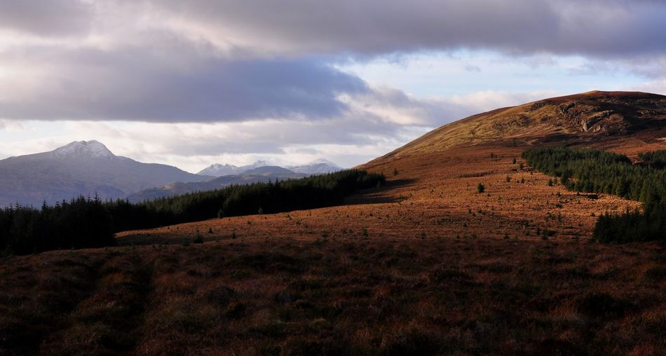 Scottish highlands view on Ben Lomond Scotland Beauty In Nature Ben Lomond Cloud - Sky Day Grass Landscape Mountain Nature No People Outdoors Scenery Scenics Scottish Highlands Sky Tranquil Scene Tranquility California Dreamin