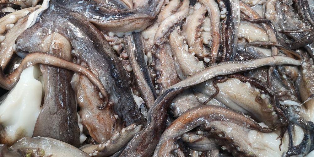 Full frame shot of fish for sale in market