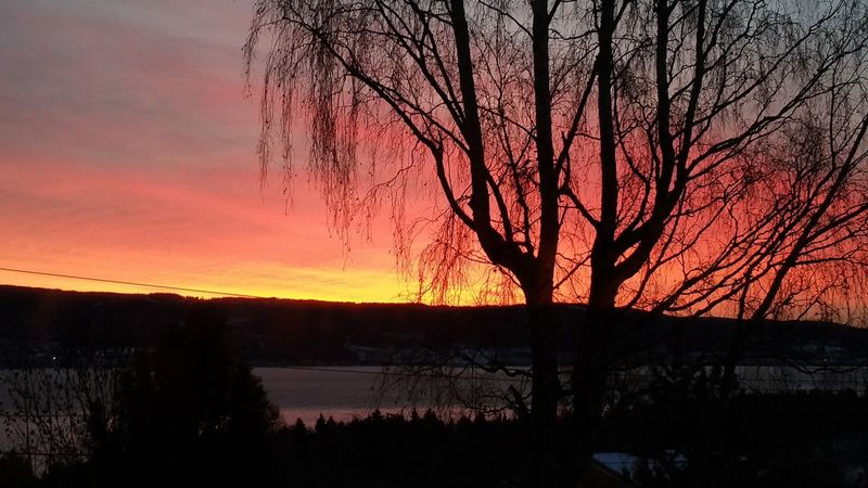Sunrise over the lake Mjøsa, Norway 😊 Check This Out Hello World Nofilterneeded Eyem Best Shots Nature_collection Eyem Nature EyeEm Nature Lover Lake View Norway Sunrise Rise And Shine Sunrise_Collection Eyem Best Shots Eyem Best Shot - My World Sky In Flames February 2016 Norwegian Winter Siluet Photography EyeEm Best Shots - Sunsets + Sunrise No Filter Needed