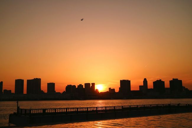 Sun Sunset Sunsets Sky Skyporn Orange Sky Orange Graduation Evening Evening Glow Cityscape Bay Bay Area Bayside Harumifutou Sea Tokyo Japan Pmg_tok