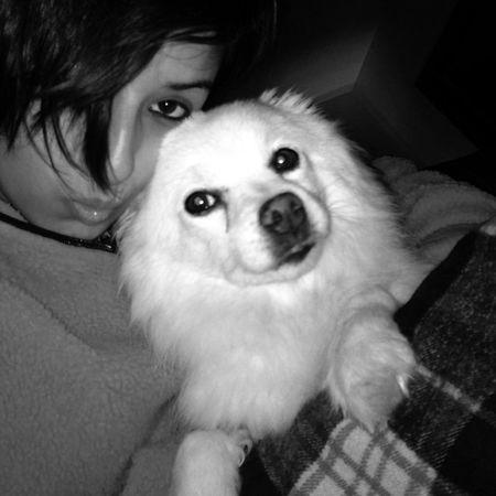 Io e Niky Picoftheday Instayear Instadog Spitzdog spitznano relax myfriend weloveeachother