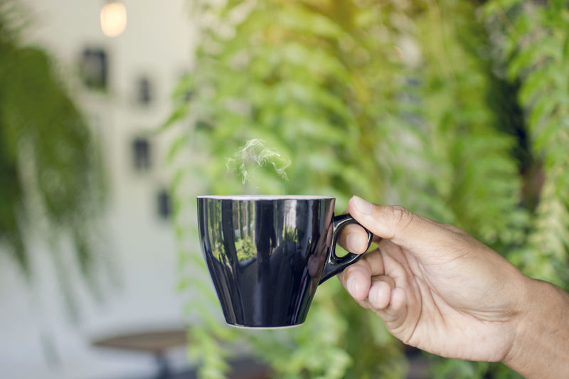 Asian man hand holding black cup of hot coffee with steaming on blurred leaves background Caffeine Steam Aroma Cafe Cup Day Drink Finger Glass Growth Hand Holding Hot Drink Human Body Part Human Limb Lifestyles Nature One Person Plant Roasted Unrecognizable Person
