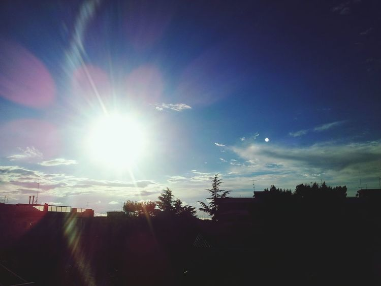 Sunshine Nature Hello World