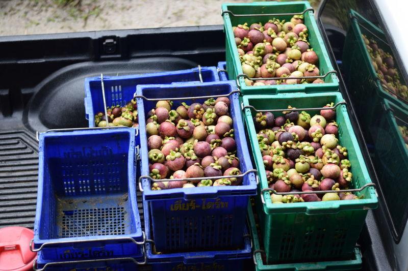 Chantaburi Thailand Amazingthailand Framers Thaifruits Travel Destinations