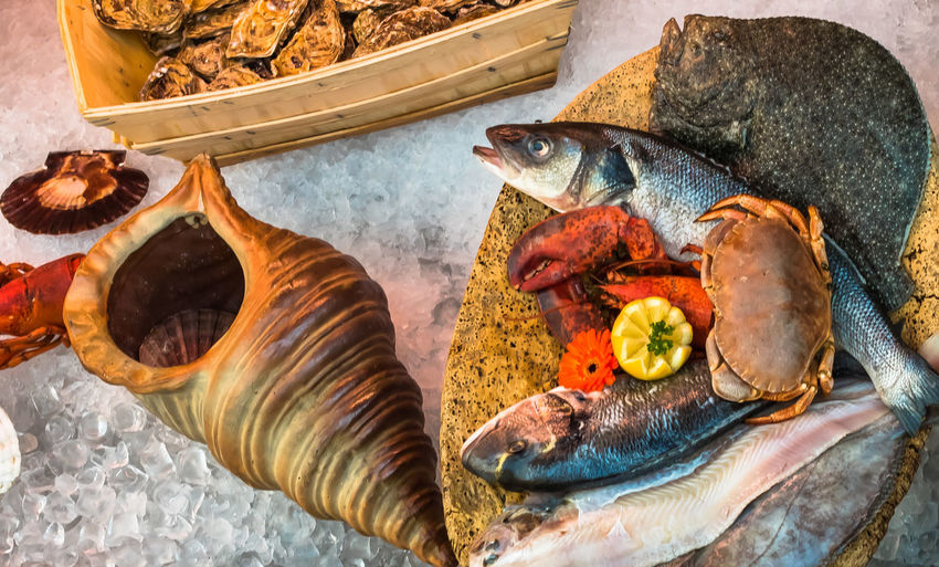 France Grimaud Close-up Fish Food Food On The Table Seafood Serving Slug An Eye For Travel