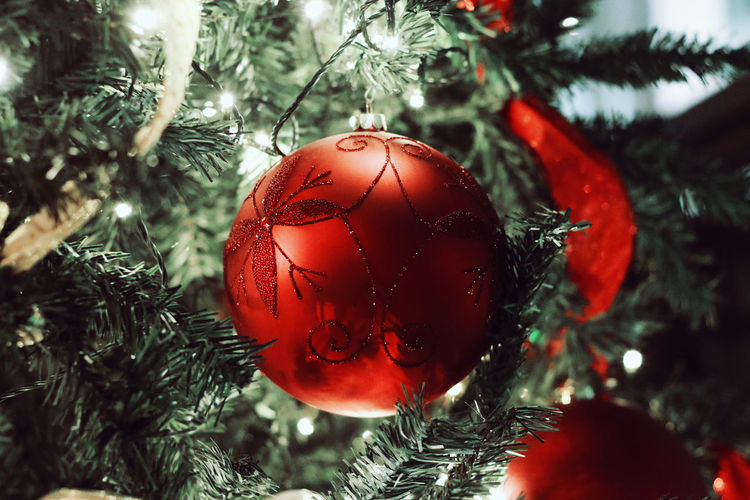 Christmas tree with red ornament 2018 December Family MerryChristmas Bauble Celebration Celebration Event Christmas Christmas Decoration Christmas Lights Christmas Ornament Christmas Tree Close-up Decoration Focus On Foreground Hanging Happy New Year Holiday Holiday - Event Indoors  Season  Tradition Tree Vacations