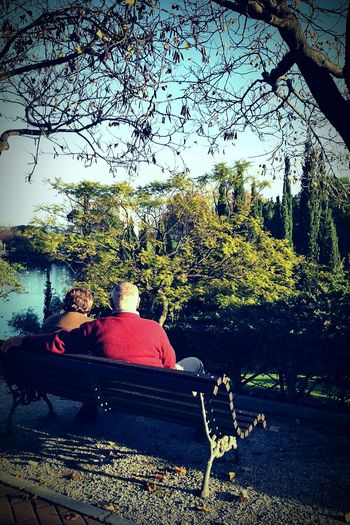 Peace And Quiet Restingtime Couple - Relationship Lifestyles Outdoors Sitting Togetherness Nature