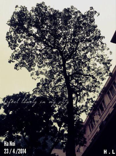 Ha Noi,I Love You <3 Beautiful Hanoi