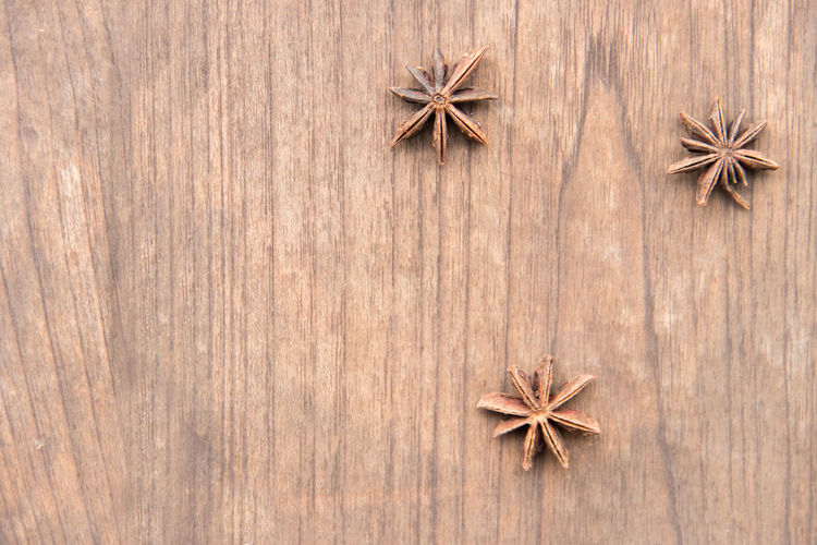 High angle view of star anise on table