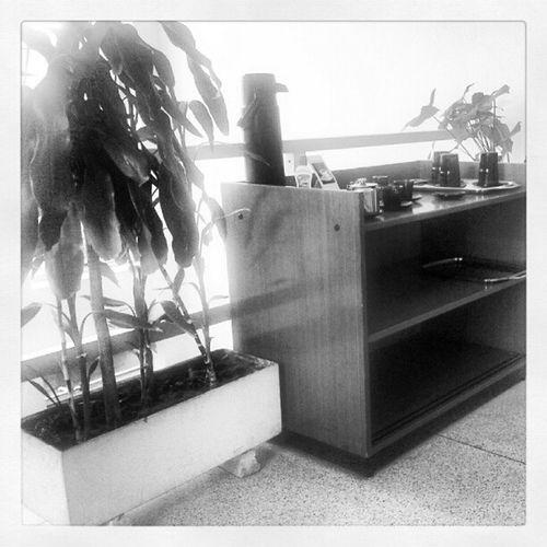 Café no cliente... Cafe Copa Cliente Corre