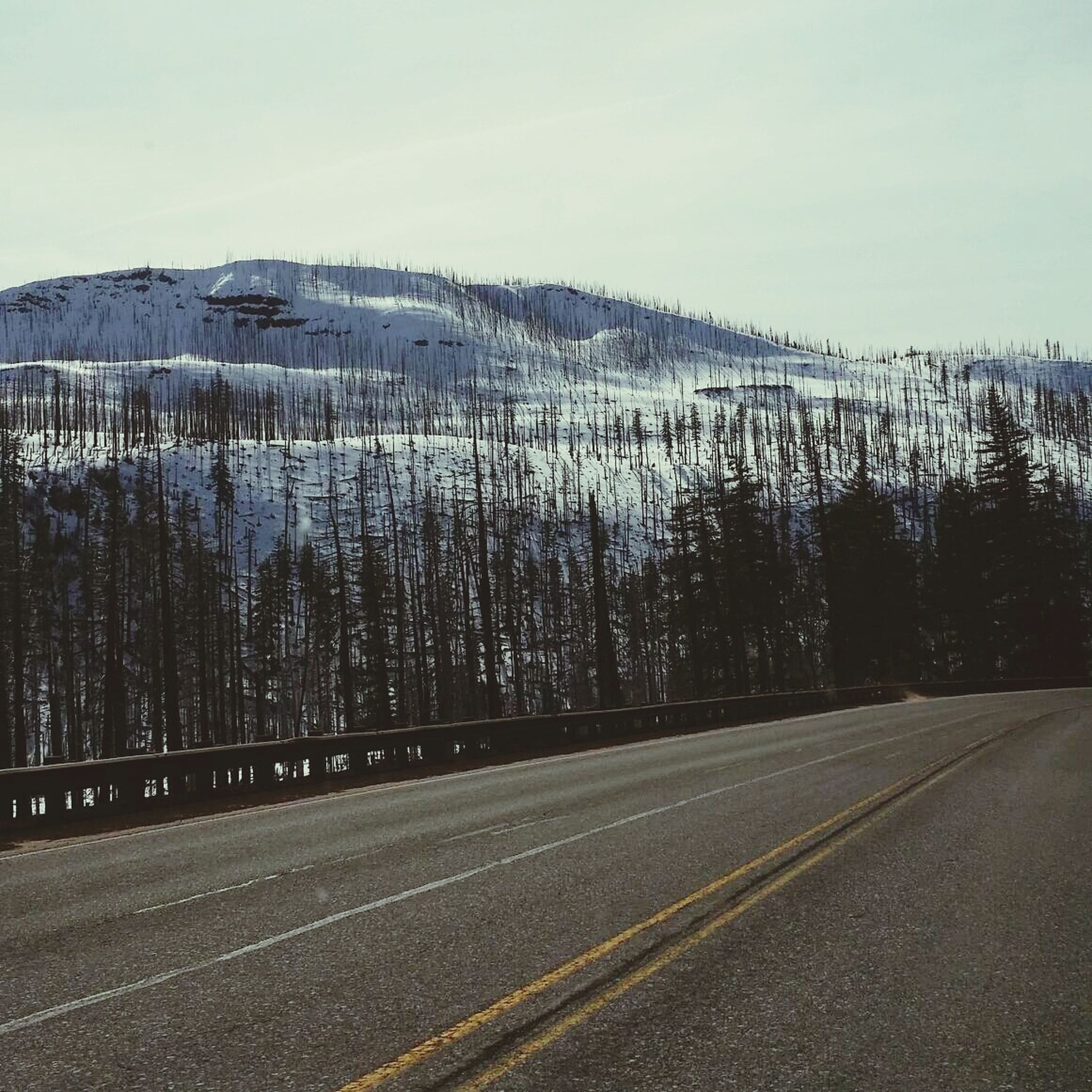 road, transportation, the way forward, sky, road marking, mountain, street, diminishing perspective, vanishing point, country road, tranquil scene, tree, empty, asphalt, landscape, day, bare tree, nature, tranquility, outdoors