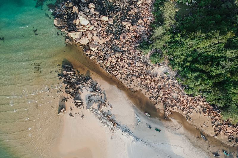 beach & storm Water Nature Land High Angle View Day No People Plant Outdoors Beauty In Nature Tranquility Beach Sea Pollution Sand Environment Sunlight Growth Animals In The Wild Tree
