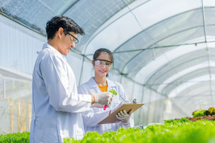 Man and woman working in greenhouse