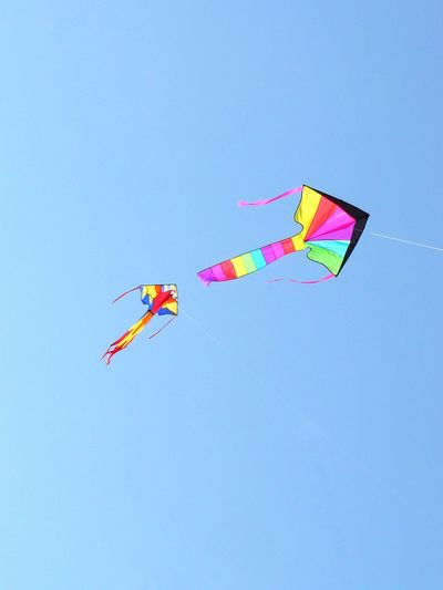 Free Flying Kites_Rondeau, Erieau {Ontario] ~ Summer Sports Blue Childhood Clear Sky Copy Space Day Erieau Flying Flying A Kite Flying High Flying In The Sky Fun Kite - Toy Kite Flying Low Angle View Mid-air Multi Colored Nature No People Ontario, Canada Outdoors Rondeau Sky The Great Outdoors - 2017 EyeEm Awards Toy Sommergefühle