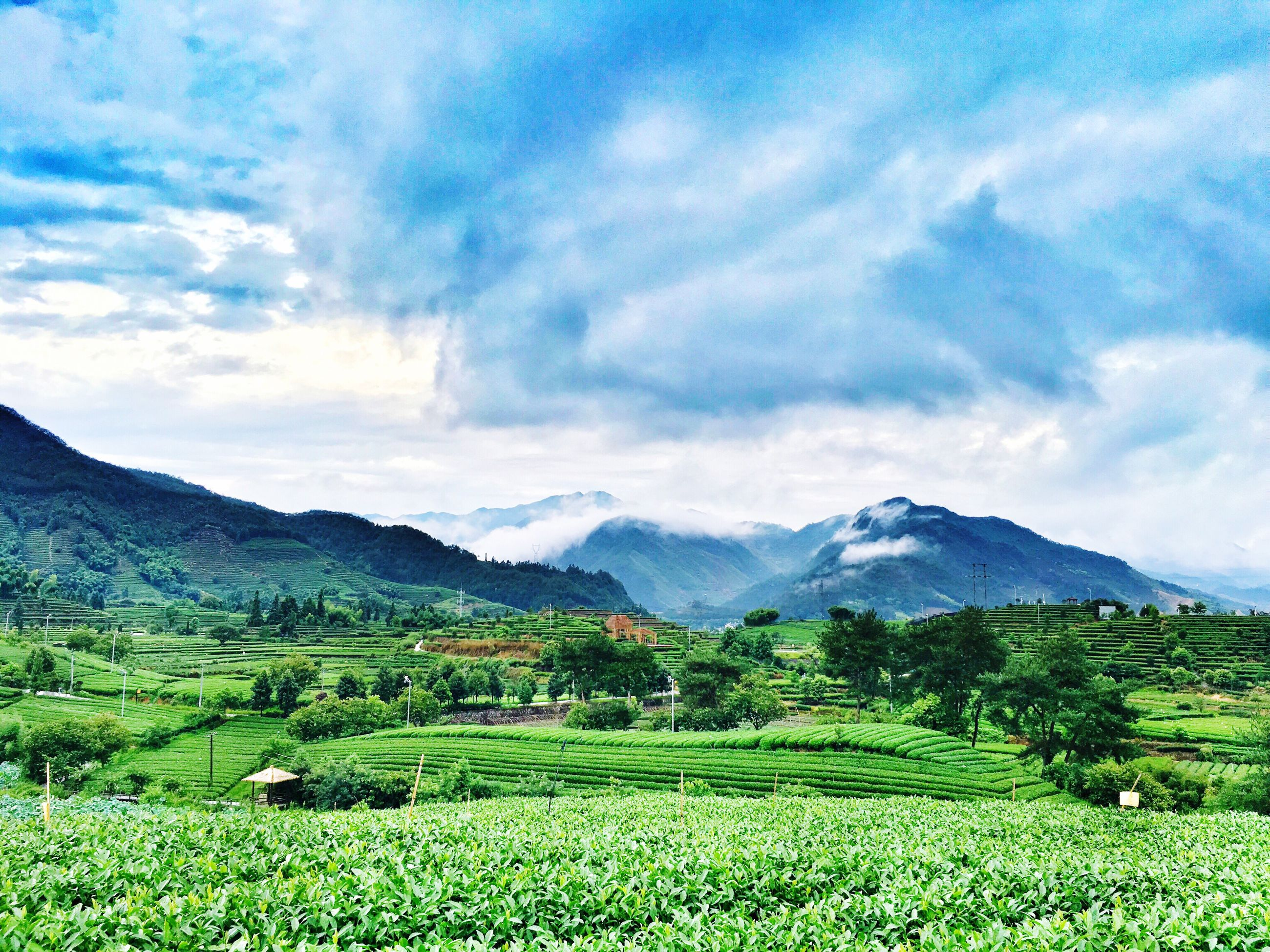 landscape, tranquil scene, mountain, tranquility, scenics, beauty in nature, sky, mountain range, field, nature, rural scene, green color, cloud - sky, grass, growth, non-urban scene, cloud, idyllic, countryside, cloudy, plant, remote, day, no people, outdoors, horizon over land, green, non urban scene, hill, grassy, majestic, lush foliage