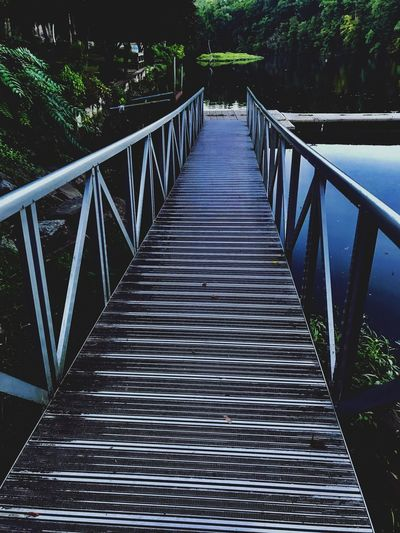 Long Dock Homeless Diminishing Perspective No People Tree Nature Connection Day Bridge - Man Made Structure Footbridge Outdoors Tranquility Wood - Material Empty vanishing point