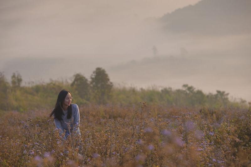 Panorama of beautiful laos landscape from mountain . vang vieng,laos