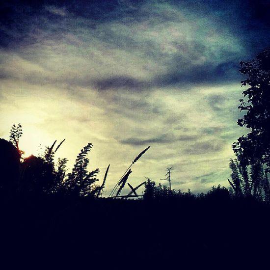 Ig_lazio Sky Scatti_italiani