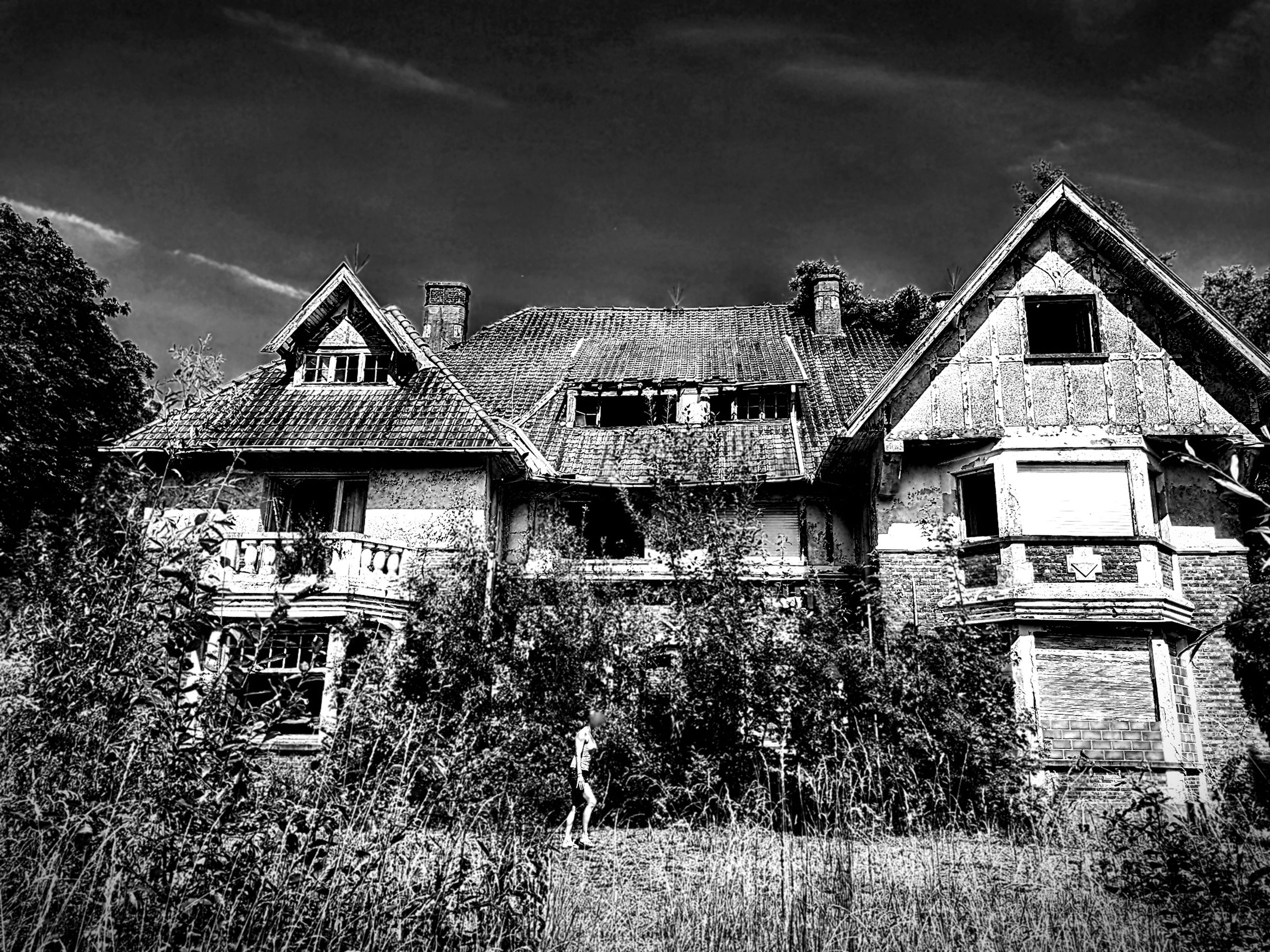architecture, built structure, building exterior, building, plant, house, no people, sky, tree, nature, residential district, day, abandoned, grass, cloud - sky, old, outdoors, land, field, growth