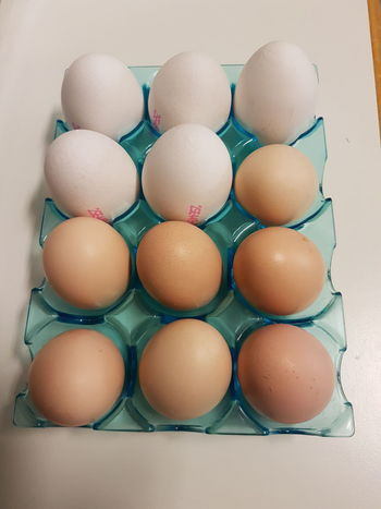 Breakfast Brown Close-up Cracked Day Egg Egg Carton Eggshell Food Food And Drink Fragility Freshness Healthy Eating Large Group Of Objects No People Protein