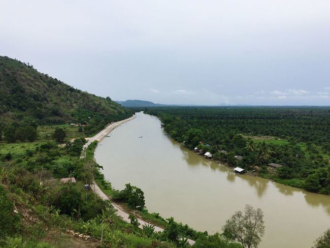 Overcast Rainyseason Ta Pi River Enjoying Life Scenic View Oilpalm Relaxing Suratthani