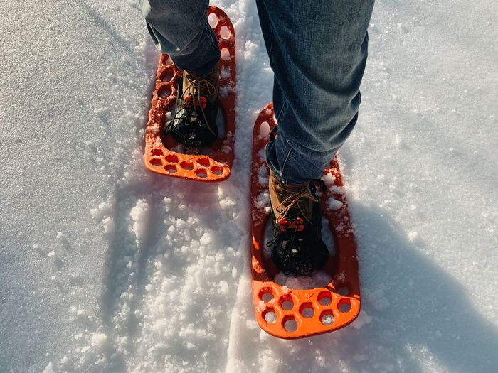 Low section of man wearing snowshoes while standing on snow covered land