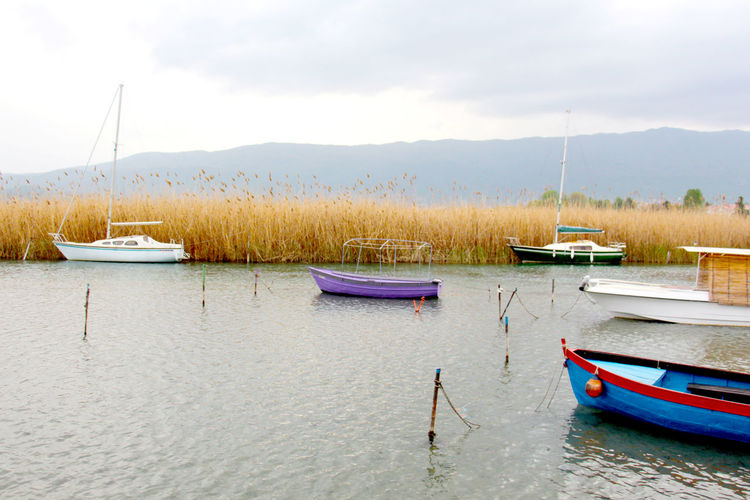 boats on lake ohrid macedonia Day Fisherman Boat Lake Ohrid Macedonia Nature Ohrid Outdoors Reed - Grass Family Skopje Struga Struga Memories Sun Shade Tourism Tourist, Travel, Nature, Trees Travel Destinations Unesco Water