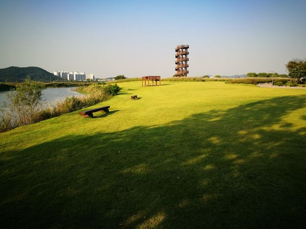 21st September, 004 Siheung South Korea Afternoon Tree Grass Tower Lght And Shadow