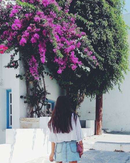 Naxos island. Greece Tropical Paradise Nature Nature_collection Nature Photography Summer Summertime Naxos Greece Island Greek Islands Greece White Flowers Landscape Postcard Pink Girl Tree City Women Water Walking Standing Sky Blooming In Bloom Cherry Blossom