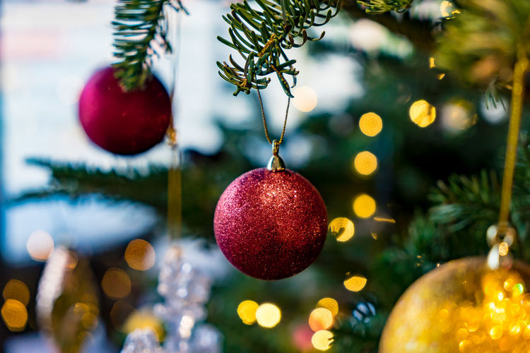 Merry Christmas Bauble Celebration Christmas Christmas Decoration Christmas Lights Christmas Ornament christmas tree Close-up Day Focus On Foreground Hanging Holiday - Event Indoors  No People Tradition Tree