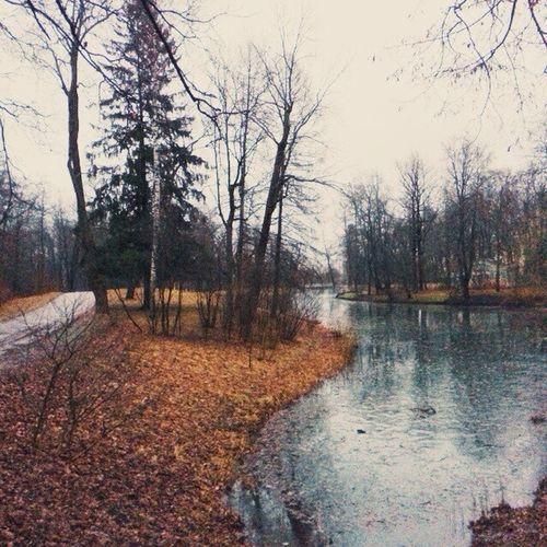 Vscocam VSCO Vscorussia Russia winter park gloomy pond winter latergram pushkin