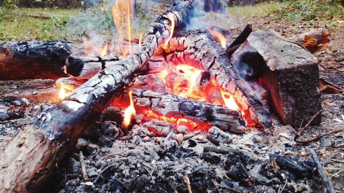 Fire - Natural Phenomenon Flame Heat - Temperature Burning Fire - Natural Phenomenon Flame Heat - Temperature Burning Glowing Outdoors High Angle View Coal Bonfire Wood - Material Barbecue Grill Fire Pit Barbecue Smoke - Physical Structure No People Day Close-up Grilled