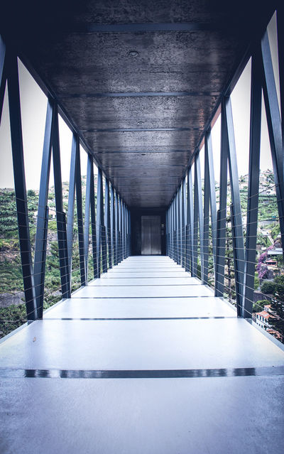 #madeira #portugal Architectural Column Architecture Bridge - Man Made Structure Built Structure Connection Covered Bridge Day No People Outdoors The Way Forward Tree Underneath EyeEmNewHere