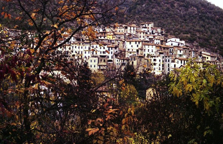 Houses Rock Village Medioeval Cities Pigna Liguria,Italy Film Photography Outdoors Nature Autumn Building Exterior