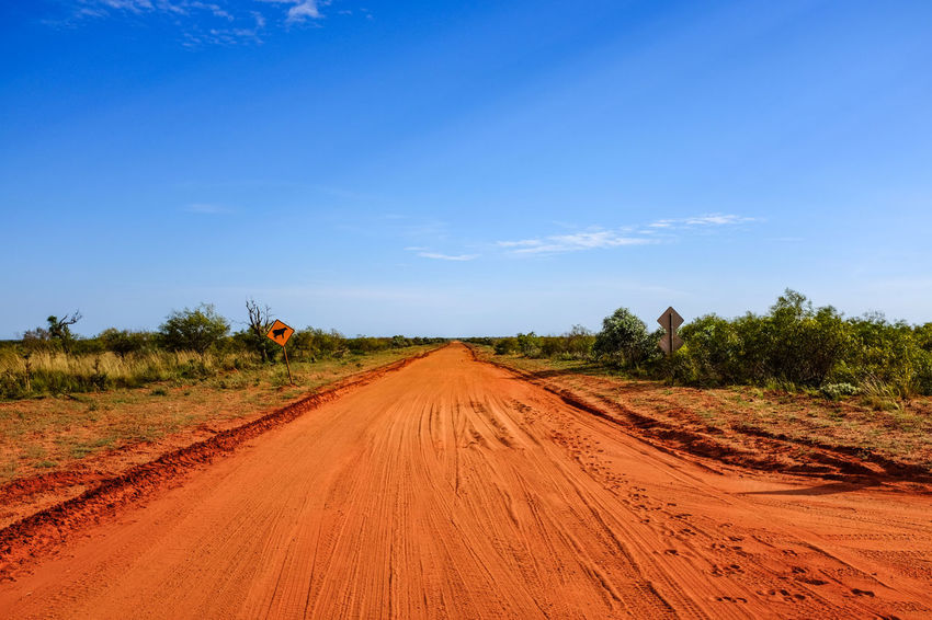 Red dirt road leading to Eighty Mile Beach, Western Australia EyeEm Best Shots Red The Week On EyeEm Agriculture Beauty In Nature Blue Blue Sky Day Dirt Eighty Mile Beach Field Landscape Mammal Nature No People Outdoors Road Rural Scene Scenics Sky The Way Forward Tire Track Transportation