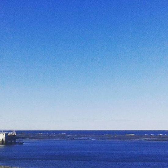 Muelle Olivia Mar Sea Blue Sky Beautiful Sky Photography Nature Nature Photography Peace