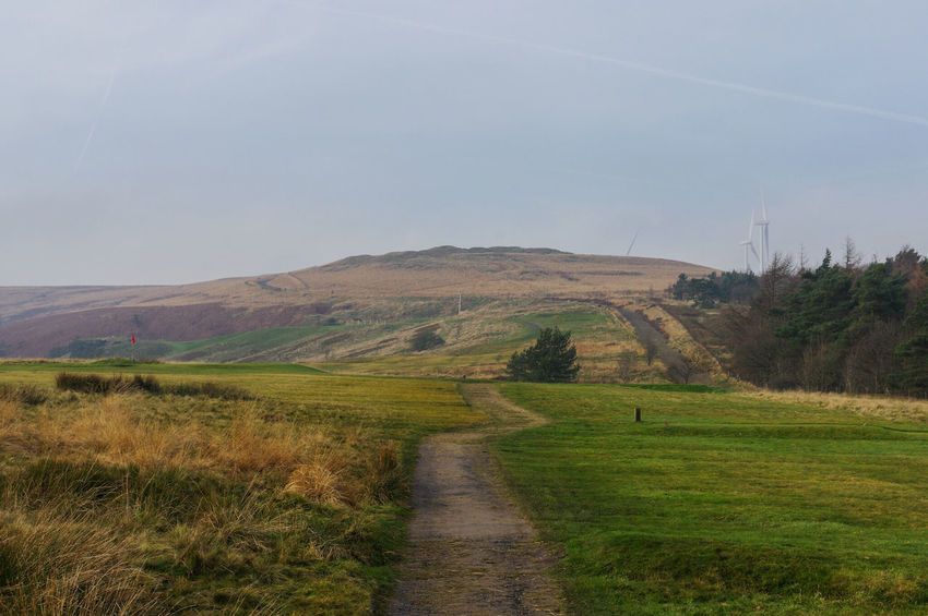 Growth Springtime Landscape No People Agriculture Outdoors Nature Beauty In Nature Sky Day Scenics Tranquil Scene Winter Golf Course Ogden Yorkshire Calderdale Hills Beauty In Nature Nature Landscapes Trees Heather Tree Trunk Pathway My Year My View