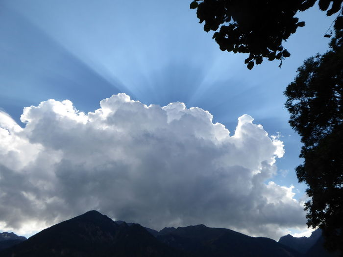 Magic light, magic sky😍😍😍 ötztal Looking Up😍 Mountains Beauty In Nature Simple Beauty Simple Photography Exceptional Photographs For My Friends🙄🙋‍♀️ Lucky Me🦄 Tirol  Beautiful Silhouette Sun Behind Clouds 🙄 Tree Mountain Blue Forest Sky Landscape Cloud - Sky
