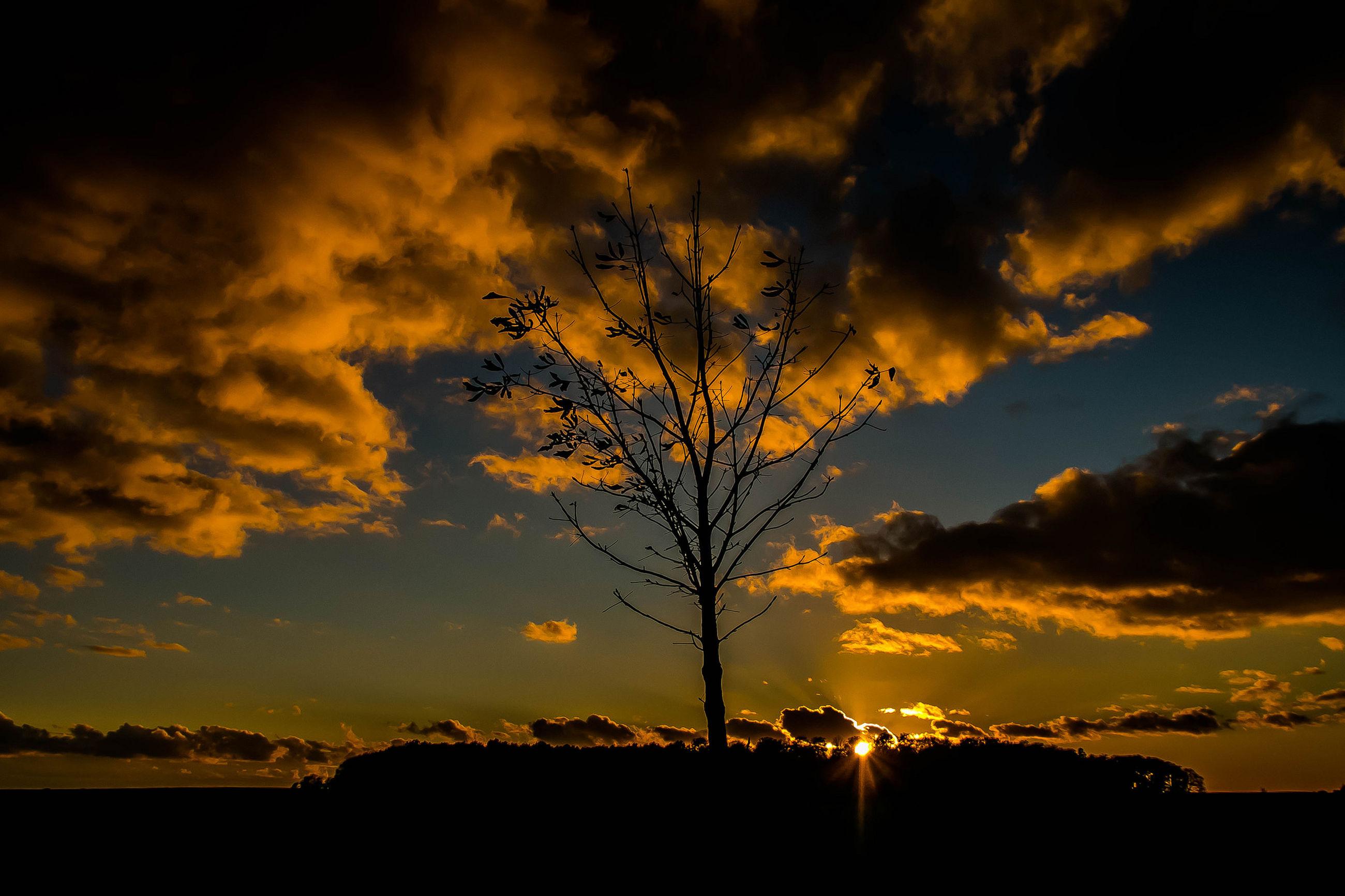 sunset, orange color, silhouette, cloud - sky, dramatic sky, cloudscape, beauty in nature, nature, tree, scenics, sky, no people, outdoors