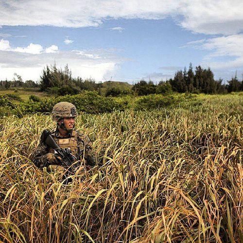Highcontrast USMC Usmilitary Marines marine marinecorps kahukutrainingarea junglepatrol 3rdMarines Hawaii devildogs