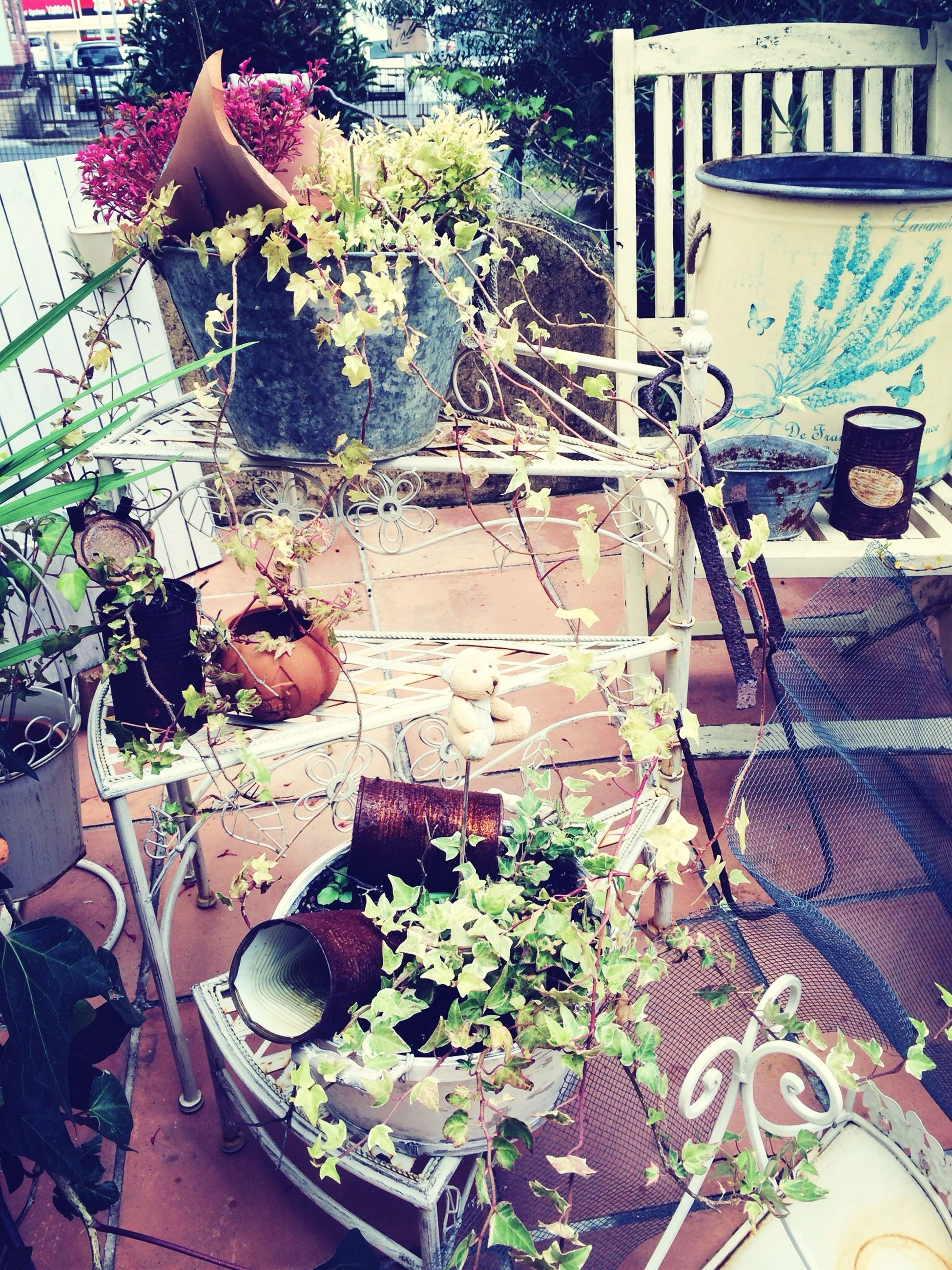 table, potted plant, indoors, high angle view, chair, still life, basket, variation, no people, plant, front or back yard, day, flower, decoration, absence, container, old-fashioned, wood - material, sunlight, house