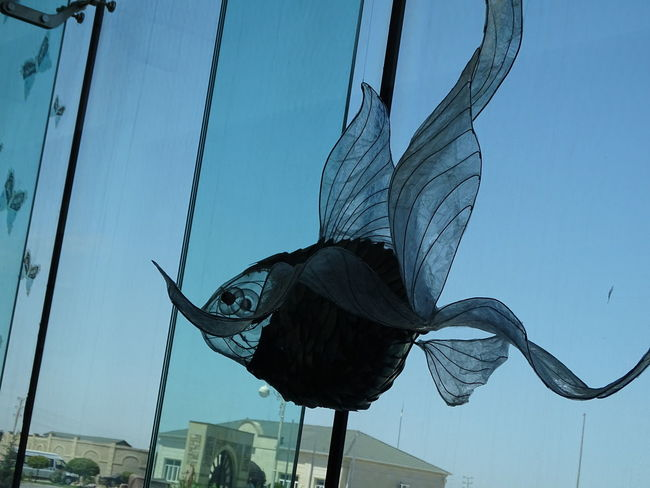 at the modern museum Clear Sky Blue Fish Sky