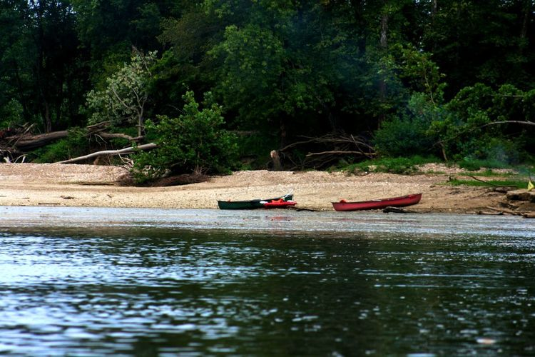 Beauty In Nature Canoe Day Forest Gondola - Traditional Boat Kayak Lake Moored Nature Nautical Vessel No People Oar Outdoors Outrigger Pedal Boat River Rowboat Rowing Scenics Tranquility Transportation Tree Water