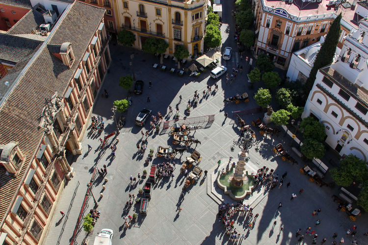 Andalucía City Cityscape Horse Cart Square Travel Traveling Architecture Building Exterior Built Structure City City Life Cityscape Crowd Day High Angle View Horse Large Group Of People Outdoors People Real People Residential Building Road Tourism Travel Destinations