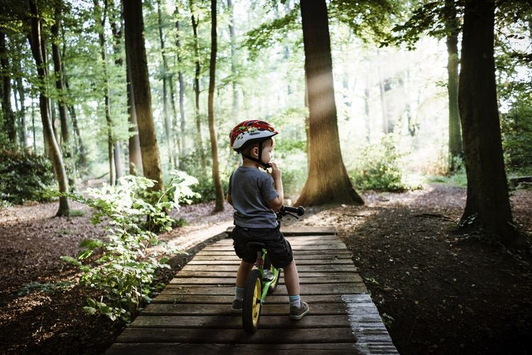 My Son on his Bike Illuminated by the Sun in the, Cycling over a Brige and wearing his Cycling Helmet . He Loves the Autumn .