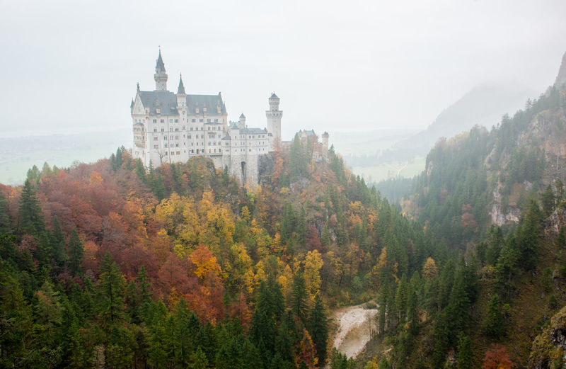 Neuschwanstein Castle with Autumn colors, Fussen, German Tree Plant Architecture Built Structure Nature Building Exterior Fog Sky Building Growth Day Mountain No People Autumn History The Past Travel Destinations Beauty In Nature Change Outdoors
